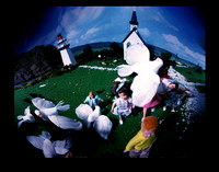 Pinhole Photography - Hitchcock Series